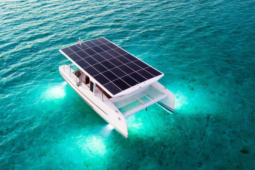The SoelCat 12 solar electric boat attracts all kinds of marine life at night and makes no sound!